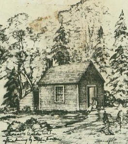 sophia's house drawing