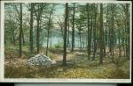 1908 lake walden postcard